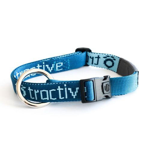 Tractive Dog Collar Small 30-50cm [20mm]