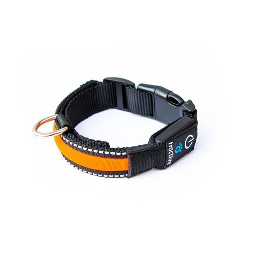Tractive LED Dog Collar [S] - orange