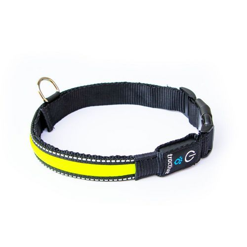 Tractive LED Dog Collar [L] - yellow